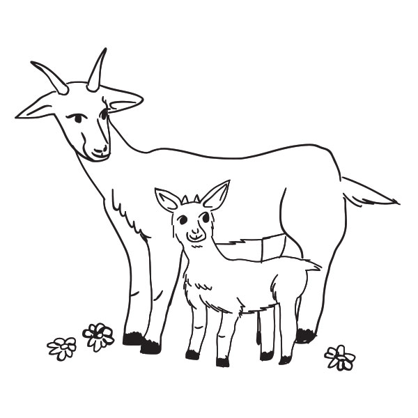Goat & Kid Coloring Page